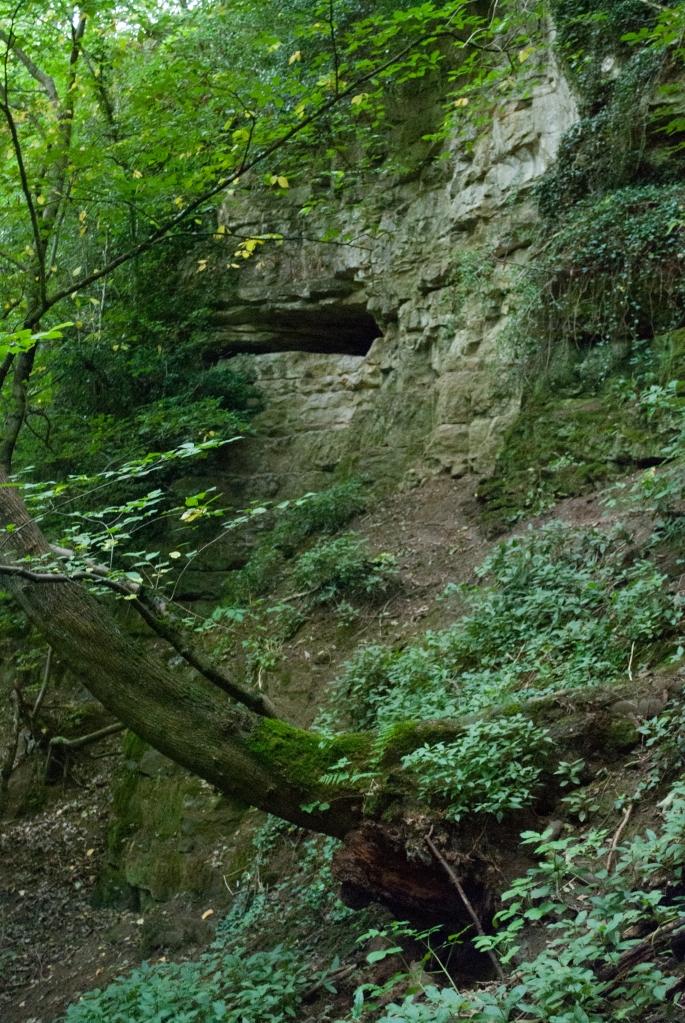 Kirkdale Caves01